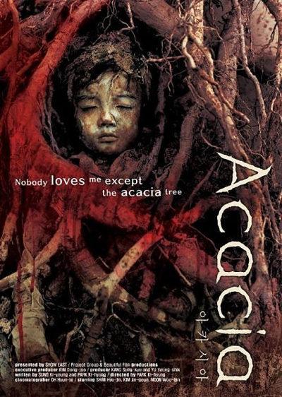 Acacia pelicula