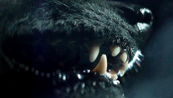 pelicula de terror the pack