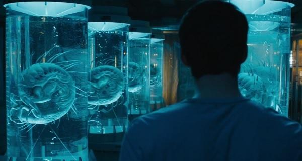 pelicula maze runner