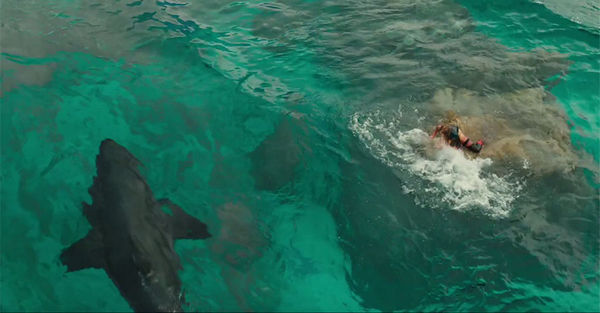 THE SHALLOWS - MIEDO PROFUNDO