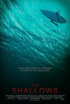 The Shallows - Miedo Profundo (2016)