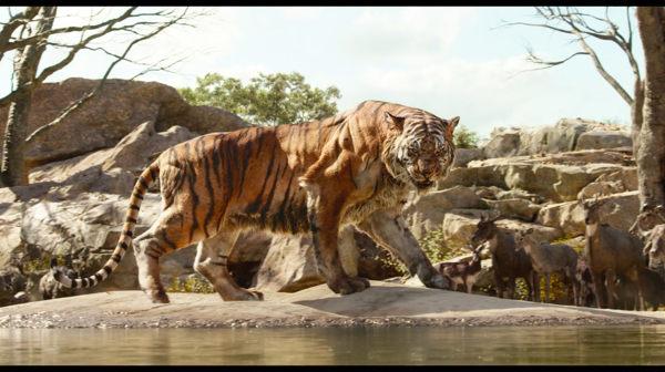 Pelicula El libro de la selva 2016