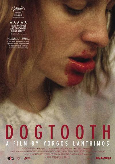 Kynodontas - dogtooth