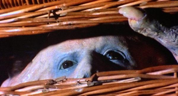 Basket Case 1982 3