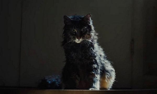 Pet Sematary 2019 - Cementerio de Mascotas