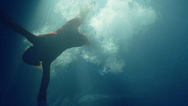 sea fever 2020 3