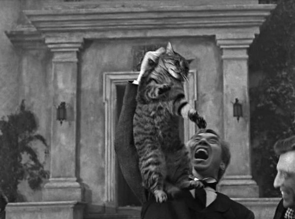 La sombra del gato The Shadow of the Cat 1961 3