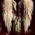 Melancholie der Engel 3